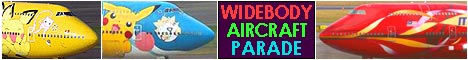 Widebody aircraft parade